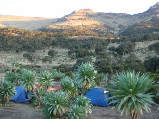 Camping Sankhaber, Simien Mountains