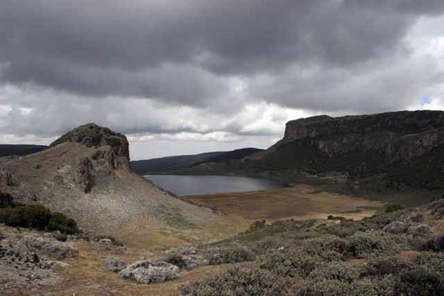 Gebra Guracha, Bale Mountains