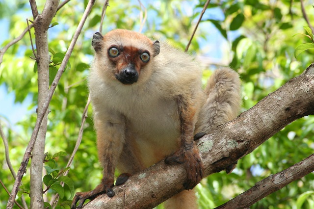 Nosy Be, Madagascar - Welcome Ethiopia Tours