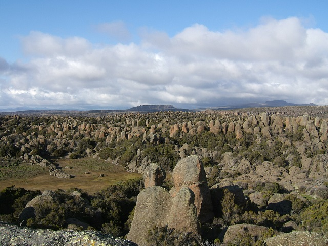Rafu, Bale Mountains