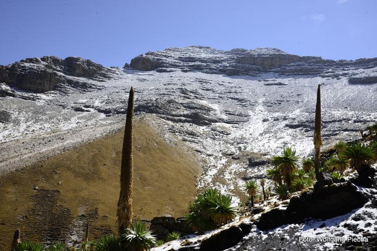 Ras Dashen, Simien Mountains